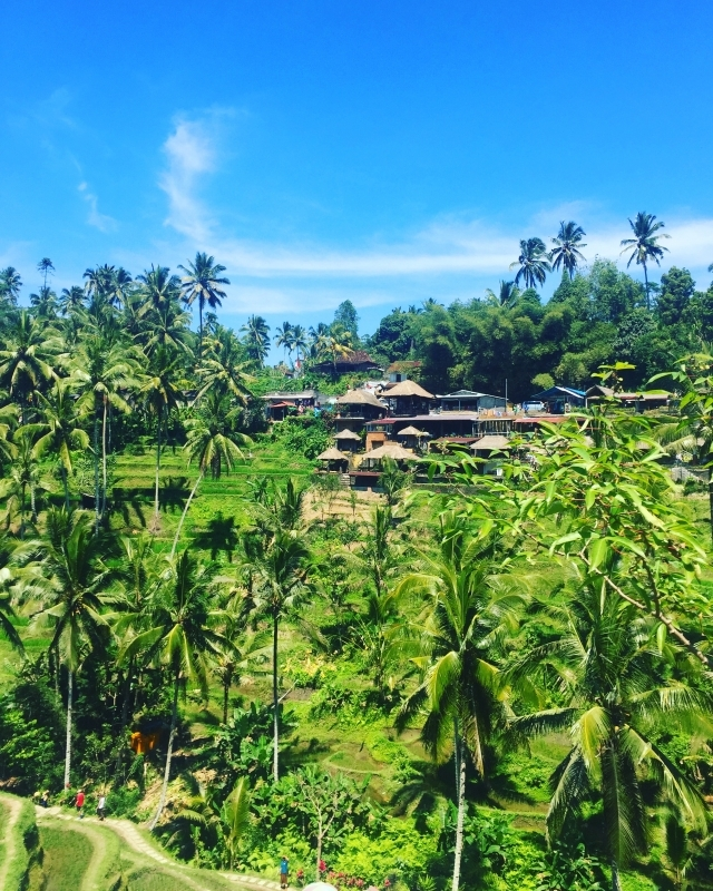 5 Places You Can't Miss in Bali